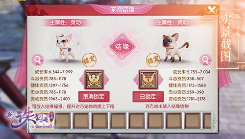 图片: 图2+宠物结缘.jpg
